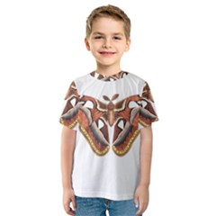 Butterfly Animal Insect Isolated Kids  Sport Mesh Tee