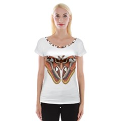 Butterfly Animal Insect Isolated Women s Cap Sleeve Top