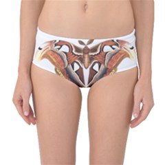 Butterfly Animal Insect Isolated Mid-Waist Bikini Bottoms