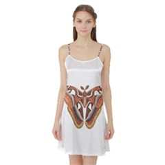 Butterfly Animal Insect Isolated Satin Night Slip