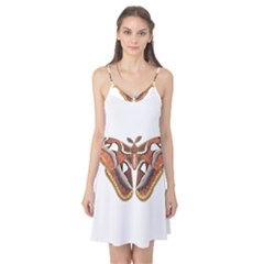 Butterfly Animal Insect Isolated Camis Nightgown