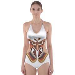 Butterfly Animal Insect Isolated Cut-Out One Piece Swimsuit