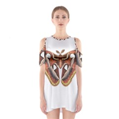 Butterfly Animal Insect Isolated Shoulder Cutout One Piece