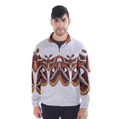 Butterfly Animal Insect Isolated Wind Breaker (Men)