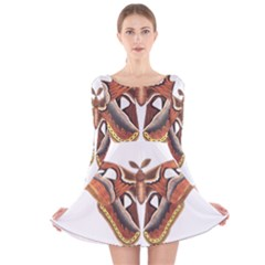 Butterfly Animal Insect Isolated Long Sleeve Velvet Skater Dress