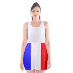 Shield on the French Senate Entrance Scoop Neck Skater Dress