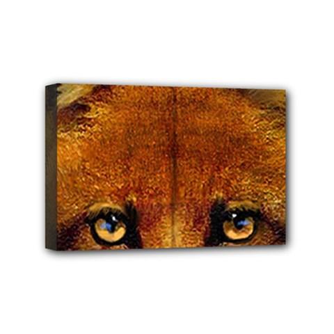 Fox Mini Canvas 6  x 4