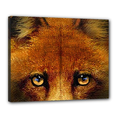 Fox Canvas 20  X 16