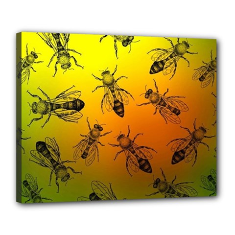 Insect Pattern Canvas 20  X 16