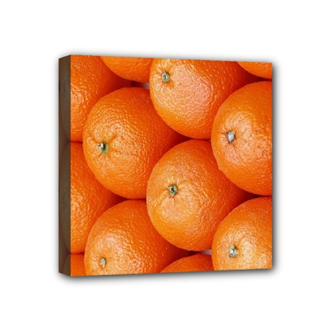 Orange Fruit Mini Canvas 4  X 4