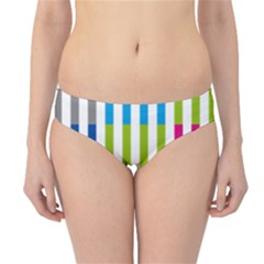 Color Bars Rainbow Green Blue Grey Red Pink Orange Yellow White Line Vertical Hipster Bikini Bottoms