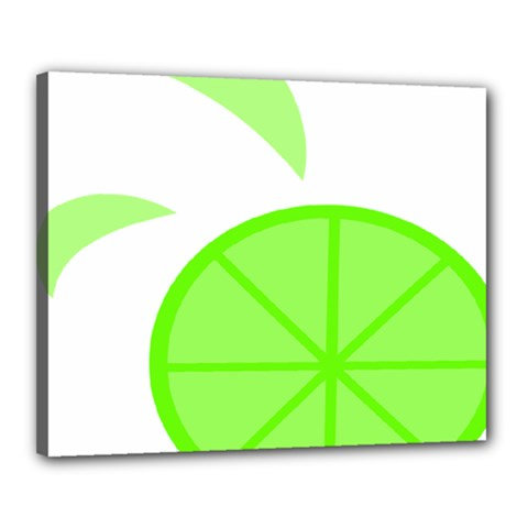 Fruit Lime Green Canvas 20  x 16