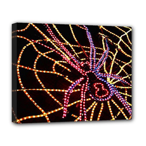 Black Widow Spider, Yellow Web Deluxe Canvas 20  X 16