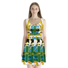 Coat of Arms of Ghana Split Back Mini Dress