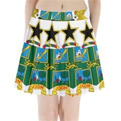 Coat of Arms of Ghana Pleated Mini Skirt