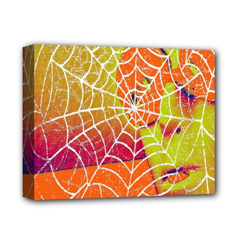 Orange Guy Spider Web Deluxe Canvas 14  X 11