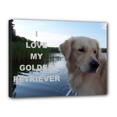 Golden Retriver Love W Pic Canvas 16  x 12