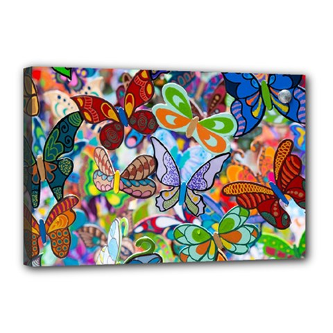 Color Butterfly Texture Canvas 18  X 12