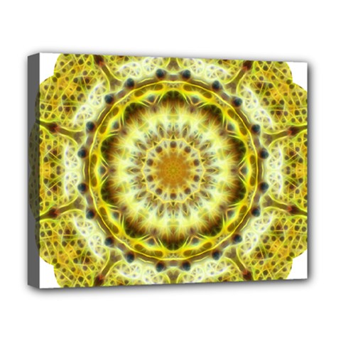 Fractal Flower Deluxe Canvas 20  x 16