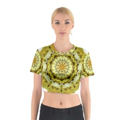 Fractal Flower Cotton Crop Top