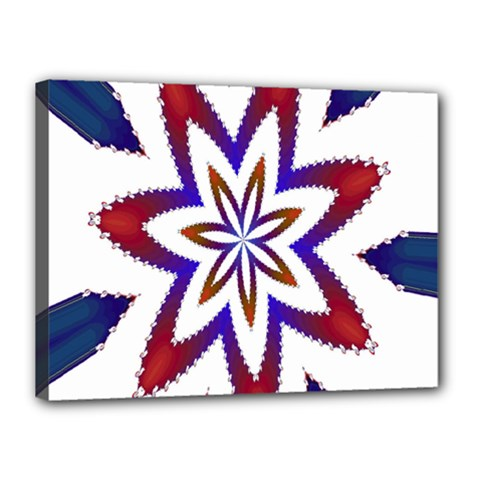 Fractal Flower Canvas 16  x 12
