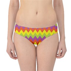 Colorful Zigzag Stripes Background Hipster Bikini Bottoms