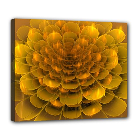 Yellow Flower Deluxe Canvas 24  x 20