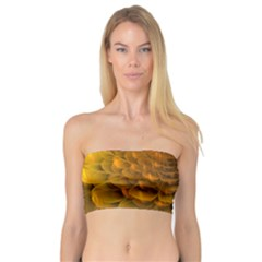 Yellow Flower Bandeau Top