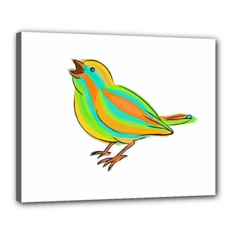 Bird Canvas 20  x 16