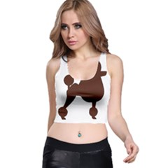 Poodle Brown Silo Racer Back Crop Top