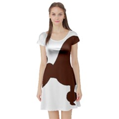 Poodle Brown Silo Short Sleeve Skater Dress