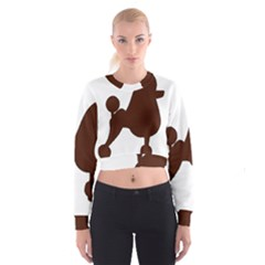 Poodle Brown Silo Women s Cropped Sweatshirt