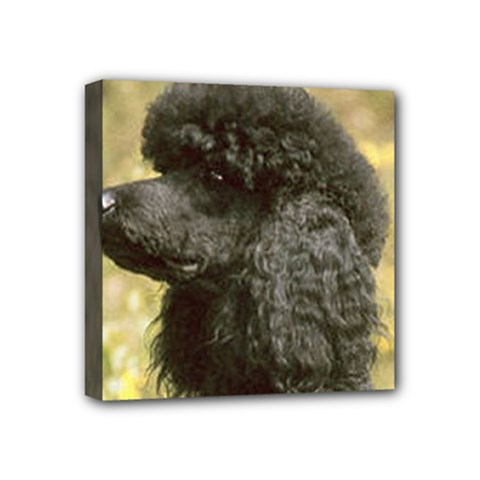 Poodle Love W Pic Black Mini Canvas 4  x 4