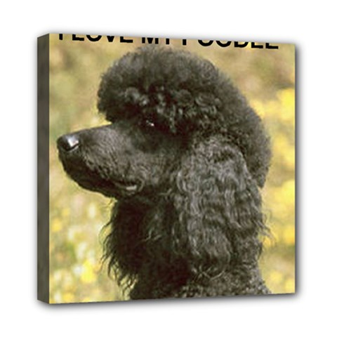 Poodle Love W Pic Black Mini Canvas 8  x 8