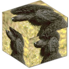 Poodle Love W Pic Black Storage Stool 12