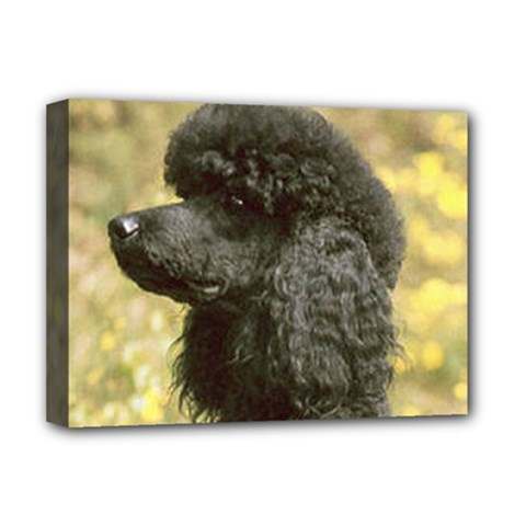 Poodle Love W Pic Black Deluxe Canvas 16  x 12