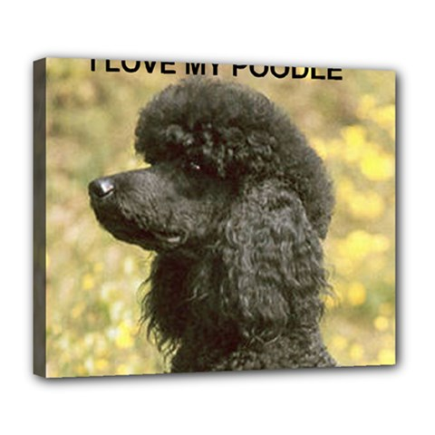 Poodle Love W Pic Black Deluxe Canvas 24  x 20