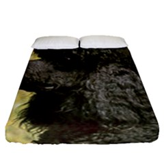 Poodle Love W Pic Black Fitted Sheet (Queen Size)