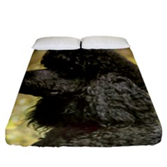 Poodle Love W Pic Black Fitted Sheet (California King Size)