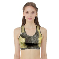 Poodle Love W Pic Black Sports Bra with Border