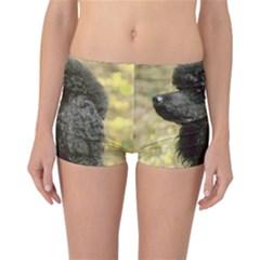 Poodle Love W Pic Black Reversible Bikini Bottoms