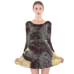 Poodle Love W Pic Black Long Sleeve Velvet Skater Dress