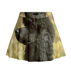 Poodle Love W Pic Black Mini Flare Skirt