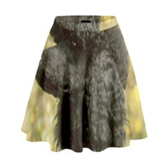 Poodle Love W Pic Black High Waist Skirt