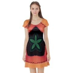 Fractal Flower Short Sleeve Skater Dress