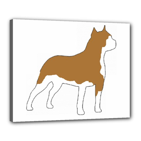 American Staffordshire Terrier  Silo Color Canvas 20  x 16