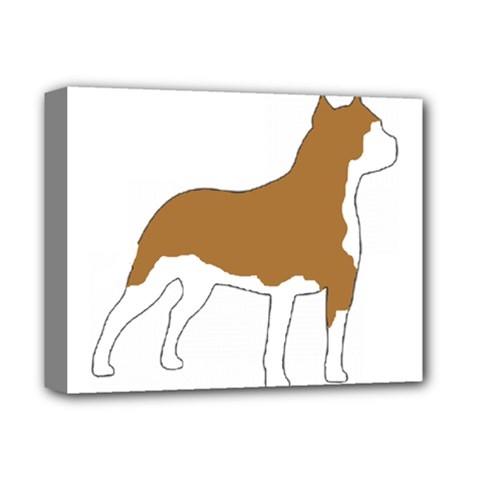 American Staffordshire Terrier  Silo Color Deluxe Canvas 14  x 11