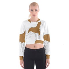 American Staffordshire Terrier  Silo Color Women s Cropped Sweatshirt