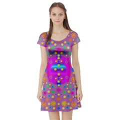 Colors And Wonderful Flowers On A Meadow Short Sleeve Skater Dress
