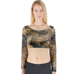 Vintage Eagle  Long Sleeve Crop Top